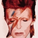 BowieBall