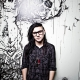 Skrillex: The Mothership Tour
