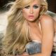 Stream: Paris Hilton