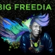 """All Hail Queen of Bounce Music BIG FREEDIA- """"Excuse"""" Video & Free EP Download"""