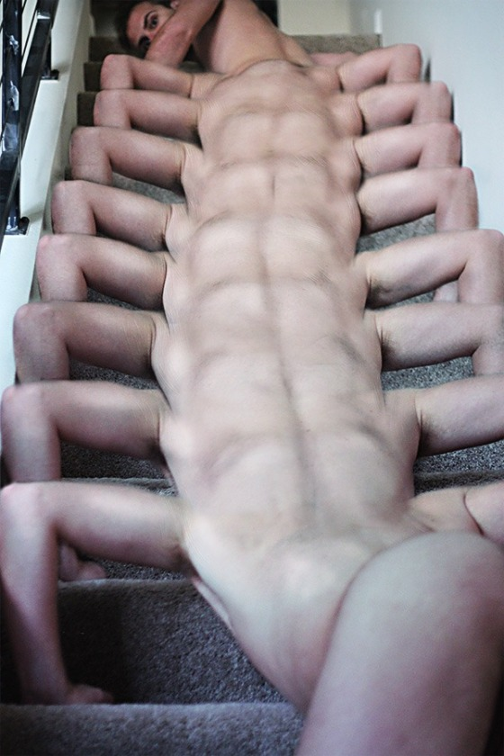 boy centipede