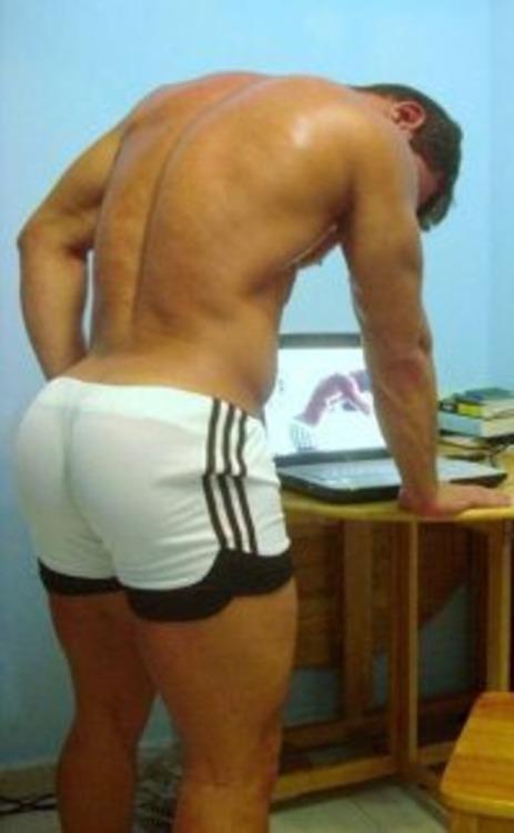 my hump