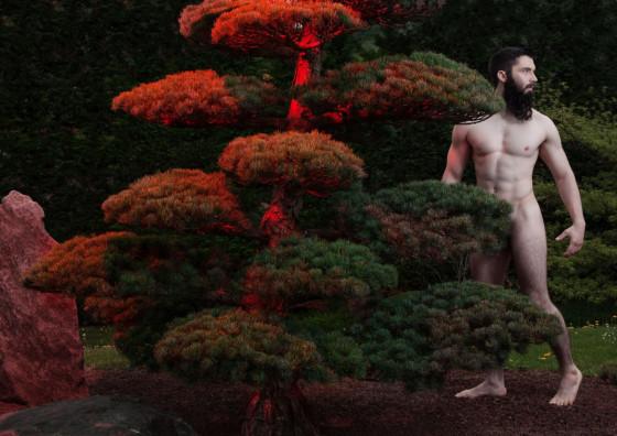 the garden of adam