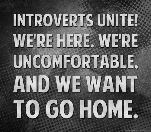 gay introverts