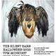 Halloween Picks!!!…10.31-11.02