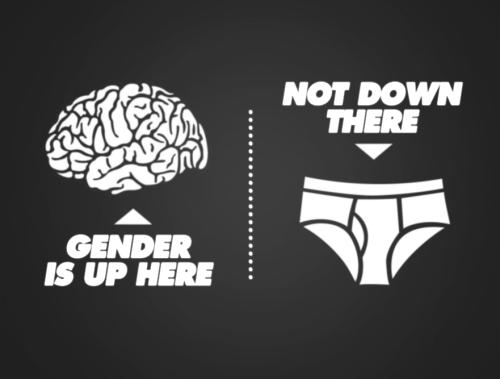 gender copy